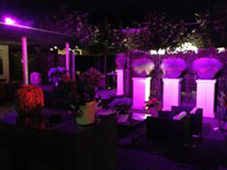 betuwe-events-styling